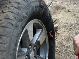 Plugged Tire